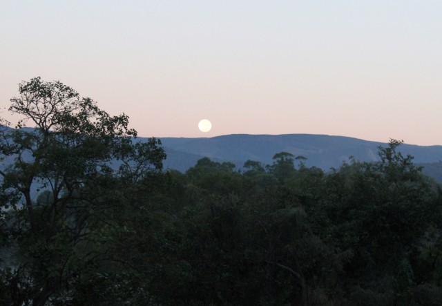Swazi Moonset